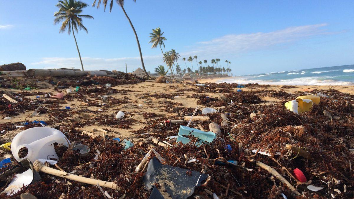 Mitigar y adaptarse a los efectos del cambio climático y reducir la contaminación ambiental